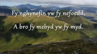 Gwyneth Glyn - Adra (geiriau / lyrics)