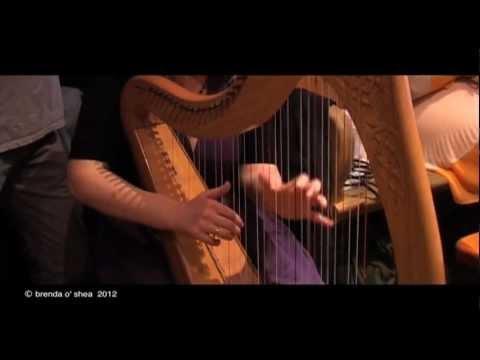 Dingle, Ireland / The Irish Harp