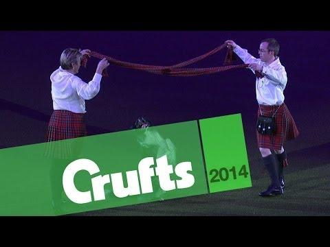 The Flip N Mickeys - Heelwork to Music | Crufts 2014