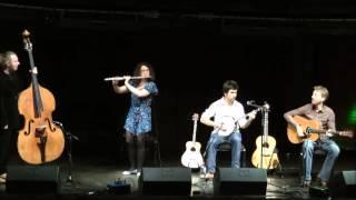 Louis Bingham tenor banjo set